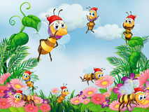 A garden with bees Royalty Free Stock Images