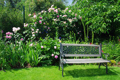 Garden and bench. Beautiful peaceful garden with a bench surrounded by pink roses royalty free stock images