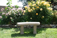 Garden Bench. Stone garden bench with roses in the background Stock Images