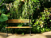 Garden Bench. A welcome place to rest at the Des Moines, IA botanical gardens stock image