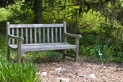 Garden Bench. With trees royalty free stock images