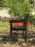 Garden Bench. Bench in Flower Garden Stock Photos