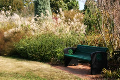 Garden Bench. Bench in a Garden - Soft Focus Stock Photography