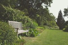 Garden with bench Stock Images
