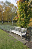 Garden bench in autumn Royalty Free Stock Photo