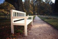 Garden bench in autumn park Stock Image