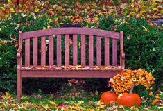 Garden Bench in the Autumn Rain Royalty Free Stock Image