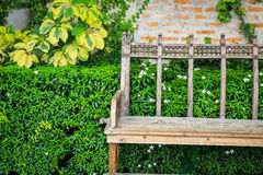 Garden Bench at blick wall and green leaf Royalty Free Stock Photography