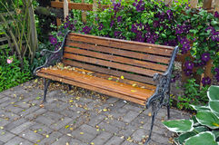 Garden bench and clematis flowers Royalty Free Stock Images