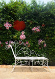 Garden bench. And flower background royalty free stock photography