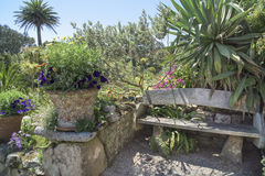 Garden Bench, flower pots. Bench in Abbey Gardens, Tresco Isles, Scilly Islands, England. The gulf stream is responsible for the warm climate Royalty Free Stock Photos