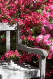 Garden bench and flowers. Detail of Garden bench and azalea flowers stock photography