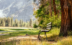 Garden bench on the hiking trail in the camping in the Yosemite National Park Stock Images