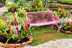 Garden bench. Pretty garden bench surrounded by flowers and greenery royalty free stock image