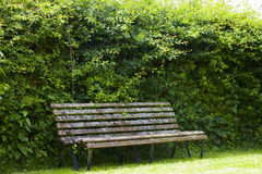 Garden Bench in secluded garden in Cotswold Stock Photography