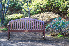 Garden bench. Sunlight shining on the bench of the garden surrounded by greenery Stock Image