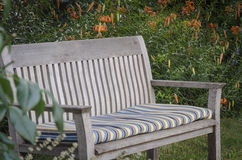Garden Bench. A weathered wooden bench with faded cushion sits invitingly in front of a background of orange tiger lilies Stock Photography