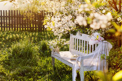 Garden bench. Garden wooden white bench with spring flowers stock photography