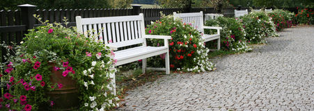 Garden benches. Nature panorama backgrounds royalty free stock photo