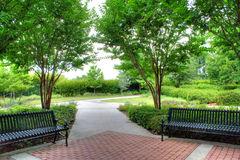 Garden Benches. Two garden benches in rest area among large shade trees.  Spring/Summer scenic Stock Photos