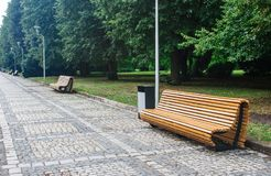 Garden benches in the city park after the rain Royalty Free Stock Images