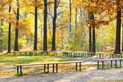 Garden benches in urban park in autumn Royalty Free Stock Photos