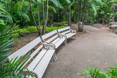 Garden benches Stock Images