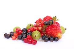 Garden berries Royalty Free Stock Photo