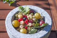 Garden berries. A stone bowl full of garden berries, raspberry, all currants, gooseberries and leaves Royalty Free Stock Image