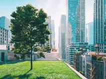 Garden in a big city. living concept. 3d rendering Stock Photo