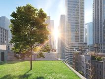 Garden in a big city. living concept. 3d rendering Royalty Free Stock Image