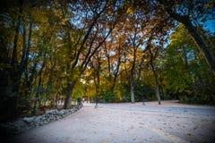 Autumn in a garden I publish and historically in valladolid Esapaña Stock Photos