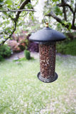 Garden Bird Feeder. Hanging from apple tree stock photography