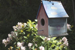 Garden Bird House. Blue and pink floating birdhouse in a garden setting Stock Photography