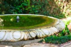 garden birdbath Stock Image