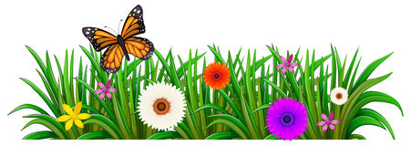 A garden with blooming flowers and a butterfly. Illustration of a garden with blooming flowers and a butterfly on a white background Stock Photos