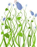 Garden with blue flowers stock illustration
