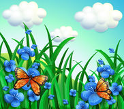 A garden with blue flowers and orange butterflies Stock Images