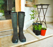 Garden boots Royalty Free Stock Image