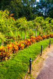 Garden at the Boston Common. Stock Photography