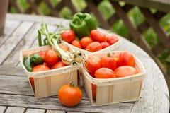 Garden bounty Stock Photography
