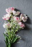Garden bouquet of tulips on a gray background, top view Stock Image