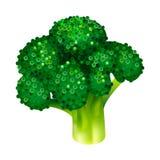 Garden broccoli icon, isometric style stock illustration