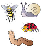 Garden bugs vector illustration