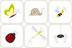 Garden bugs Stock Photo
