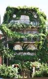Garden build on house. Green Garden build on house Stock Photo