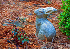 Garden Bunny Stock Photography