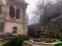The garden at the Bussaco Palace, Portugal Stock Images