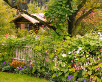 Garden Cabin Stock Image