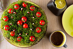 Garden cake. An improvised garden cake made from ground, grass, candles and cherry tomatoes Royalty Free Stock Images